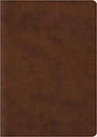 ESV: Archaeology Study Bible (Imitation Leather/TruTone, Brown)