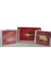 세계베스트찬양 대전집 - 하늘 가는 밝은 길이 (10 CD Set)