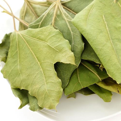 순천꿈이있는교회 장은익 집사의 국내산 유기농 여수황칠 잎(건조/100g)