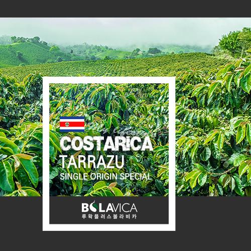 커피볼라비카 싱글오리진 코스타리카 따라주 (230g, 500g)
