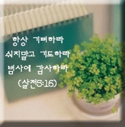 세라믹 말씀자석 - 항상 기뻐하라(살전 5:16)