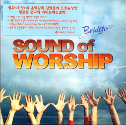 Bridge Live Worship 2009 - Sound of worship (CD)