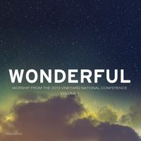 Vineyard National Conference - Wonderful LIVE (CD)