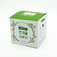 (우리집 정원가꾸기) 꽃집사_안개꽃 키우기