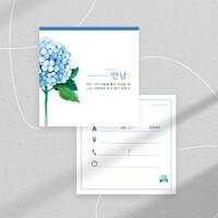 피콕 새가족 양육 메시지 엽서-만남