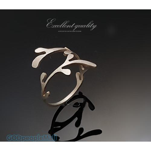 반지-어찌 그리 아름다운지요 반지(시편8:1)
