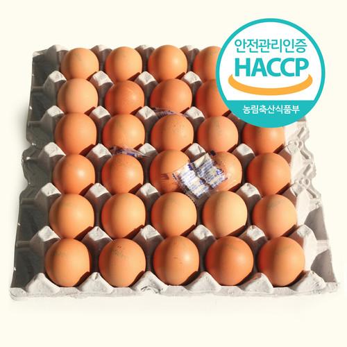 계란사랑 맥반석 구운계란 구운란 1판 (40g*30구)