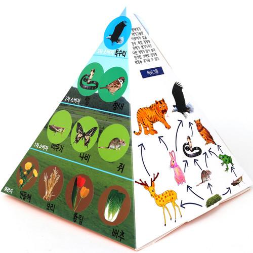 [만들기패키지]먹이사슬피라미드(5개이상구매가능)