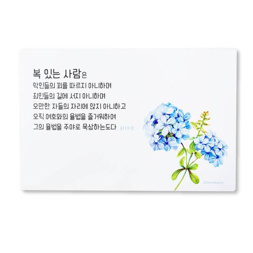 드보라아르떼 예배상 [복있는상20개)