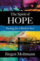 Spirit of Hope: Theology for a World in Peril (소프트커버)