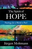 Spirit of Hope: Theology for a World in Peril (소프트커버)