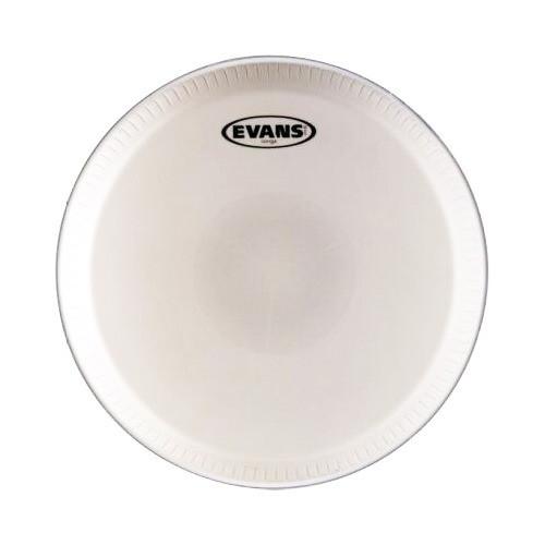 Evans 콩가 헤드 EC1100
