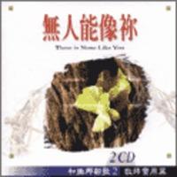 호산나신가 2집 (수입 CD)