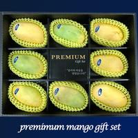 [선물세트] 프리미엄 망고선물세트 (8개입)