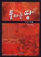 불타는 땅  제1권 피와 불 - 김성일 장편소설