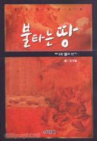 불타는 땅  제2권 불과 연기 - 김성일 장편소설