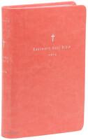 이스트워드 성경전서 소 단본 (색인/PU소재/무지퍼/피치/NKR62ETHU)