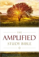 Amplified Study Bible, Large Print (양장본)