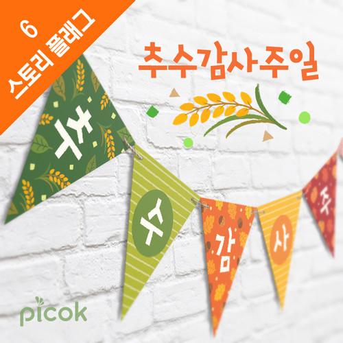 피콕 스토리플래그_추수감사주일