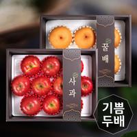 [기쁨두배] 사과1박스(10개)   배1박스(6개)