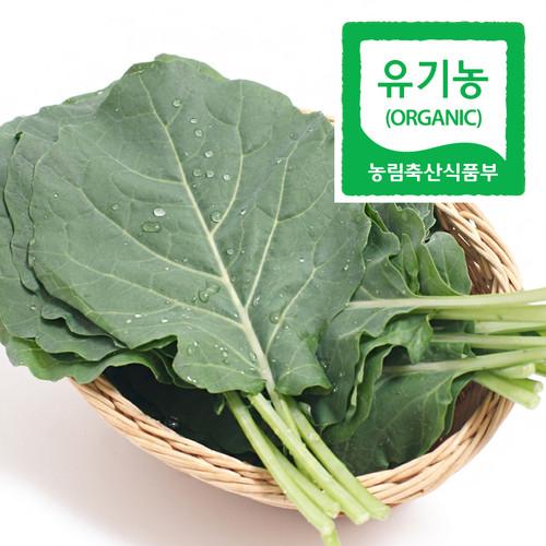 쌍샘자연교회 전성수 전도사의 유기농 친환경 케일 - 쌈용 800g