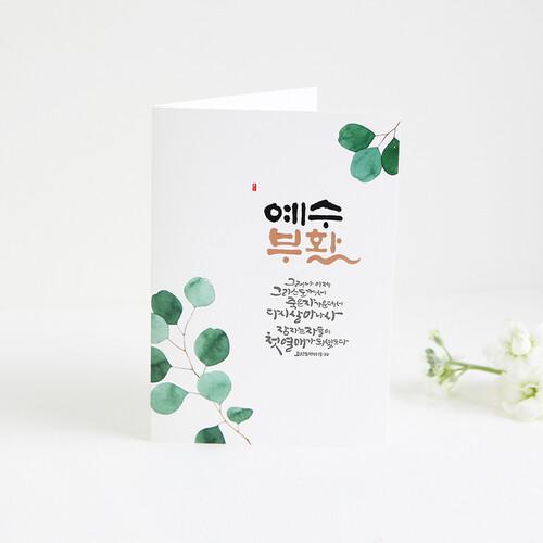 청현재이 부활절 카드 03.초록잎
