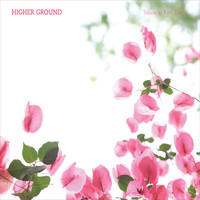 김진억 - Higher Ground (CD)