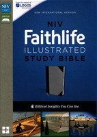 NIV: Faithlife Illustrated Study Bible (Imitation Leather, Gray/Black)