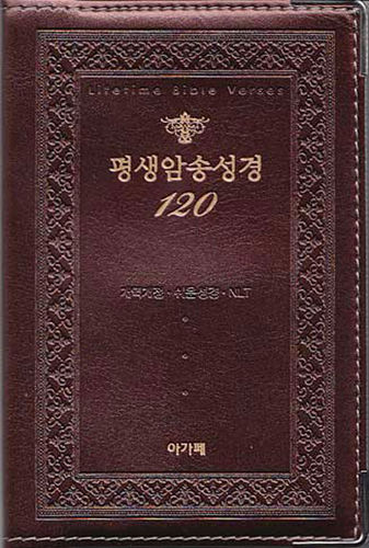 평생암송성경 120 (개역개정/쉬운성경/NLT)