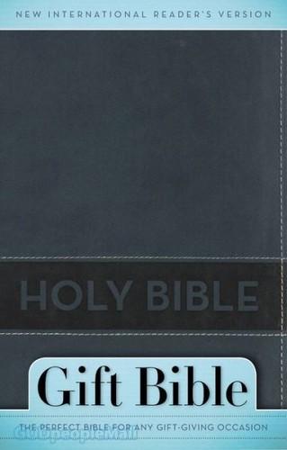 NIrV: Gift Bible, Rev Ed. (Leather-look, Slate Blue)