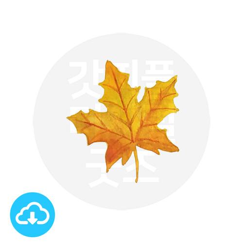 디지털 그림자료 5 단풍나뭇잎 by 해피레인보우 / 이메일발송(파일)