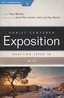 Exalting Jesus in Acts (Paperback)