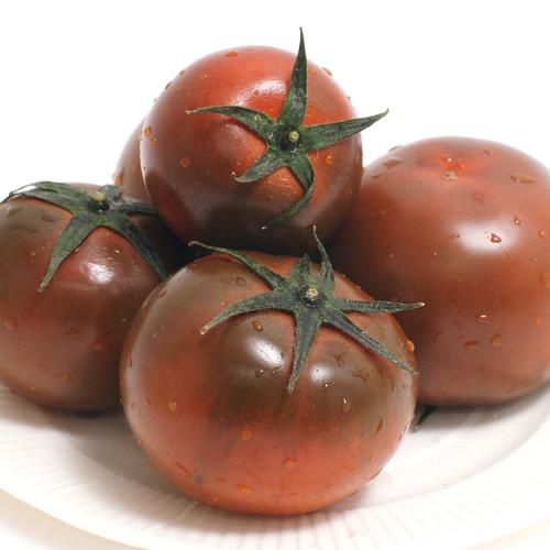 보성 동산교회 김동순 장로의 흑토마토 4kg (1,2번)