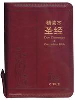 중국어 톰슨 주석성경 소단본 (간체자/색인/지퍼/이태리신소재/소/적색)