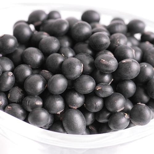 당진 신평감리교회 박규식 집사의 약콩(쥐눈이콩/1kg)