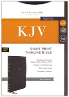 NLT: Premium Value Large Print Slimline Bible (Tutone Brown/Tan Leatherlike)