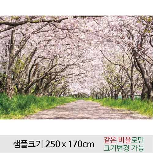 봄배경(벚꽃)현수막-089  ( 250 x 170 )