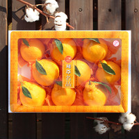 [선물세트] 제주 한라봉 3kg (9~10개)