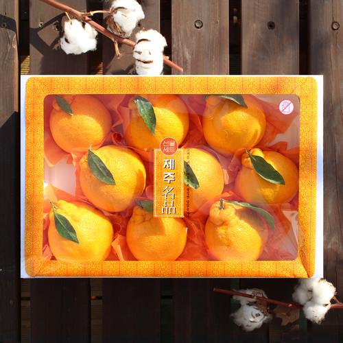 [선물세트] 제주 한라봉 3kg(9~10개)