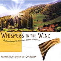 Whispers In The Wind(팬파이프 연주) - Worship On Panpipes (CD)