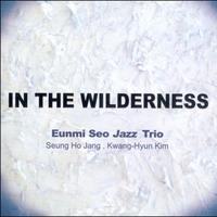 서은미 재즈 트리오 - IN THE WILDERNESS(CD)