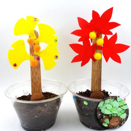 나무와 식물키우기(5개이상구매가능)