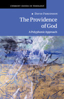 Providence of God: A Polyphonic Approach (PB) (Current Issues in Theology)