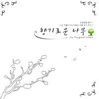 향기로운 나무 (CD)