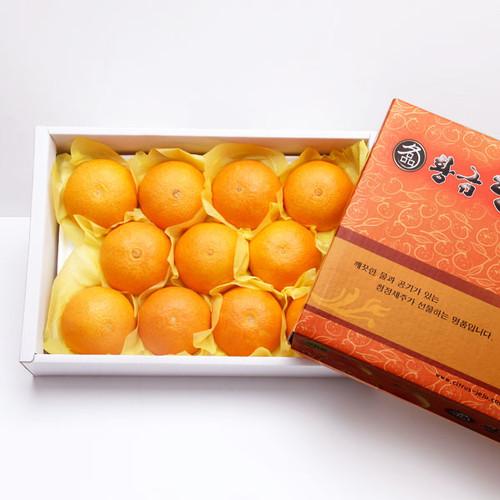 제주 황금향세트 3kg (12~15과)