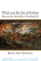 What was the Sin of Sodom: Homosexuality, Inhospitality, or Something Else?: Reading Genesis 19 as Torah  (PB)