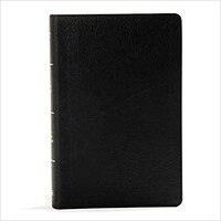 KJV: Reference Bible, Large Print, Personal Size (Classic Burgundy, Imitation Leather)