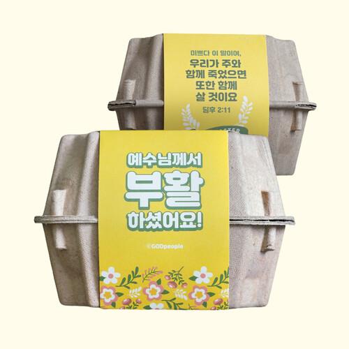 2021 Brown 부활절 달걀케이스 10개set (노랑띠지10/브라운케이스10)