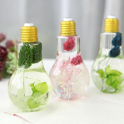 LED전구하바리움 포아플란츠 시들지않는꽃 감성인테리어