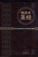 중국어 톰슨 주석성경 중단본 (간체자/색인/지퍼/이태리신소재/다크브라운)
